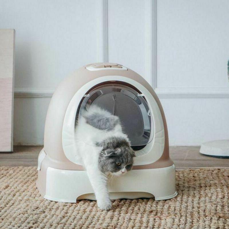 closed beetle cats sandbox training pet toilet