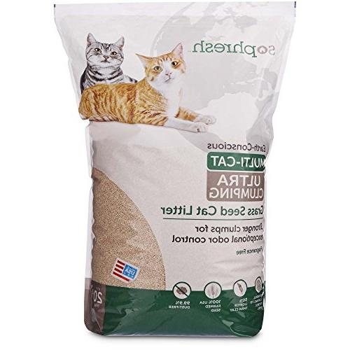 clumping unscented grass seed cat