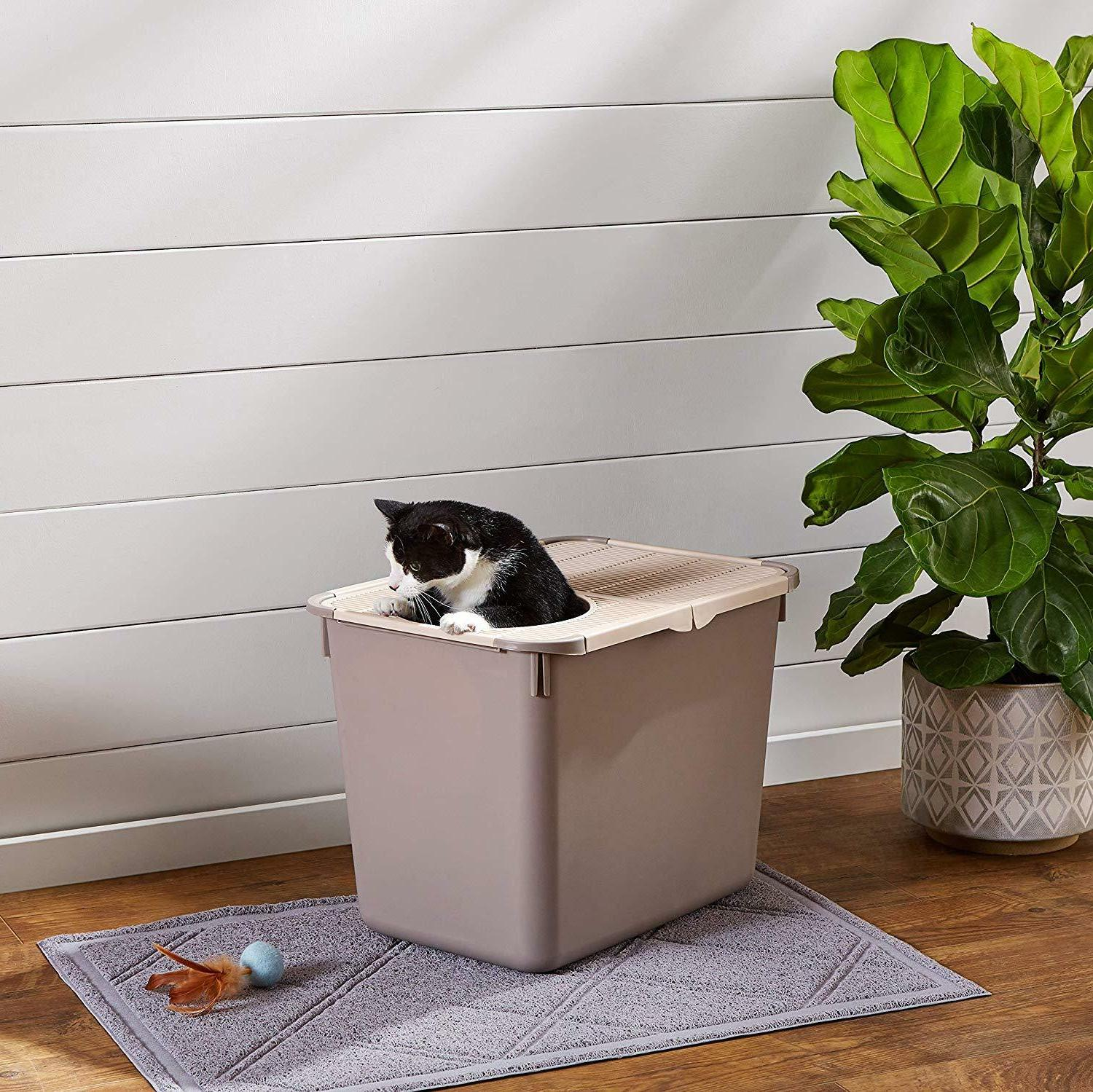 HOODED CAT BOX Pet Large Kitty House