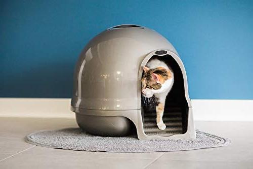 Petmate Step Cat Litter 3