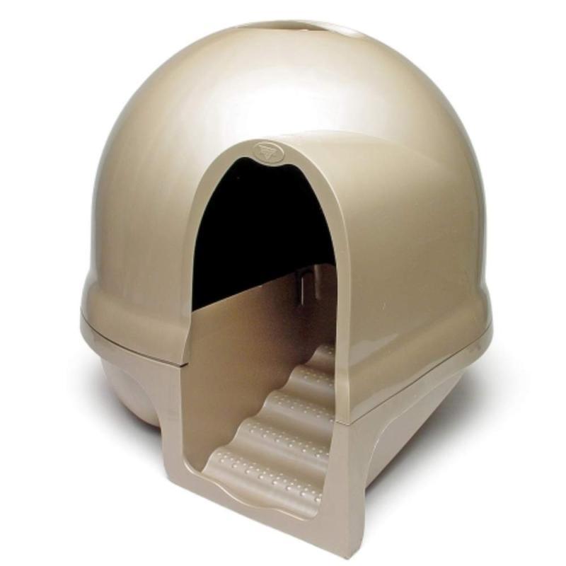 Ptmt Dome Titanium