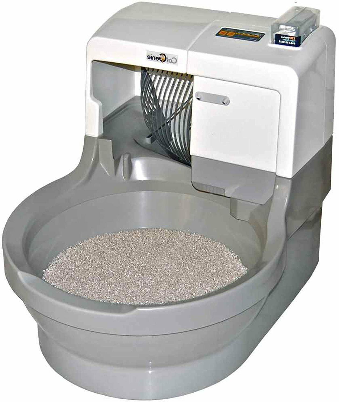 self washing flushing cat