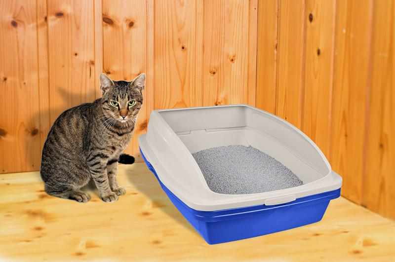 Sifting Cat Litter Box Frame 3 Part Pet Cleaning Blue Large