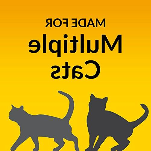 Purina Tidy BREEZE Cat System Kit