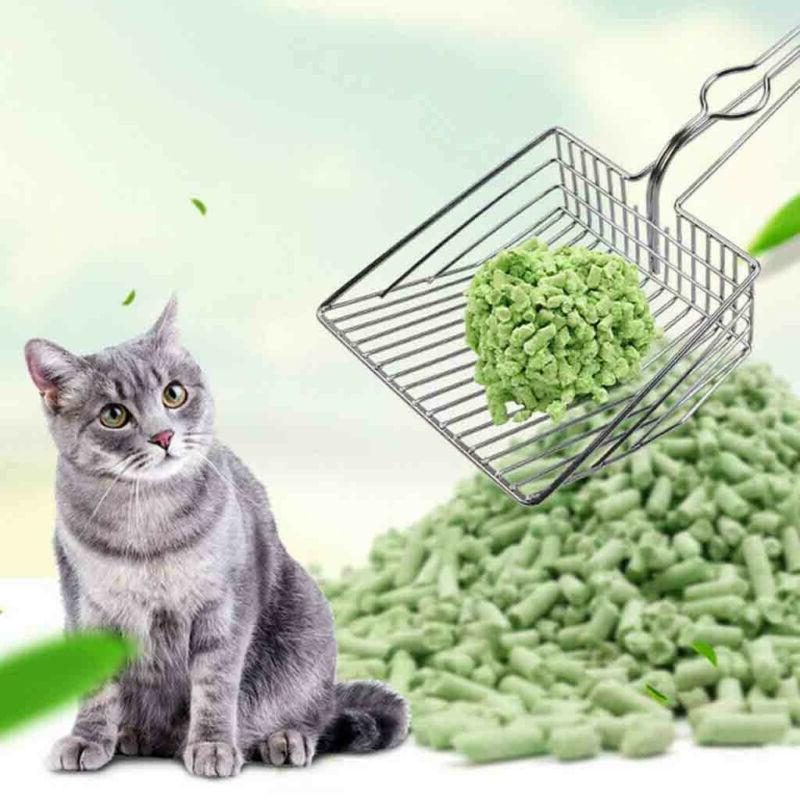 Instant Filter Cat Scoop Duty Cats Litter USA