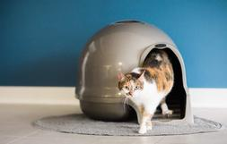 NEW Petmate Clean Step Litter Dome Titanium Freeshipping