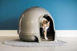Petmate Dome Clean Step Cat Litter Box